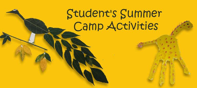 Student's Summer Camp Activities